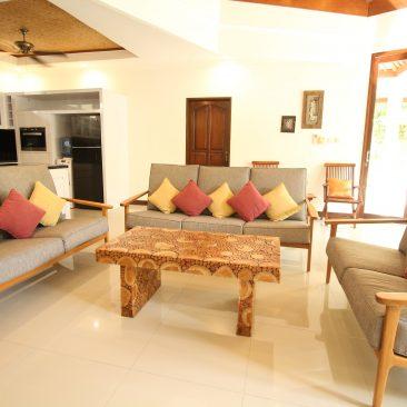 Living Room Sofas_compressed